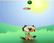 �gyess�gi Frisbee dog